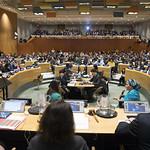 O Πρόεδρος του Διοικητικού Συμβουλίου του ΟΝΕΚ στη Σύνοδο Νεολαίας των Ηνωμένων Εθνών