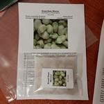 Broad beans Monica