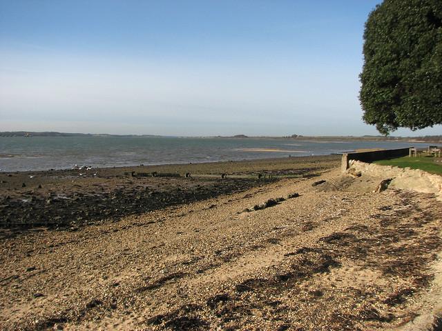 The shore at Shotley Gate