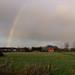 rainbow jan