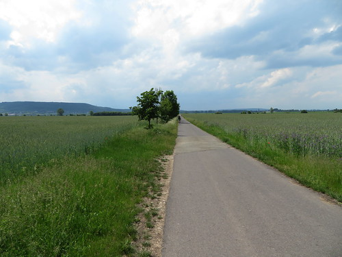 20170603 06 195 Regia Wolken Feld Bäume Pilger ElisabethB