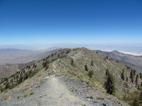 The trail up Telescope Peak, Death Valley National Park, California