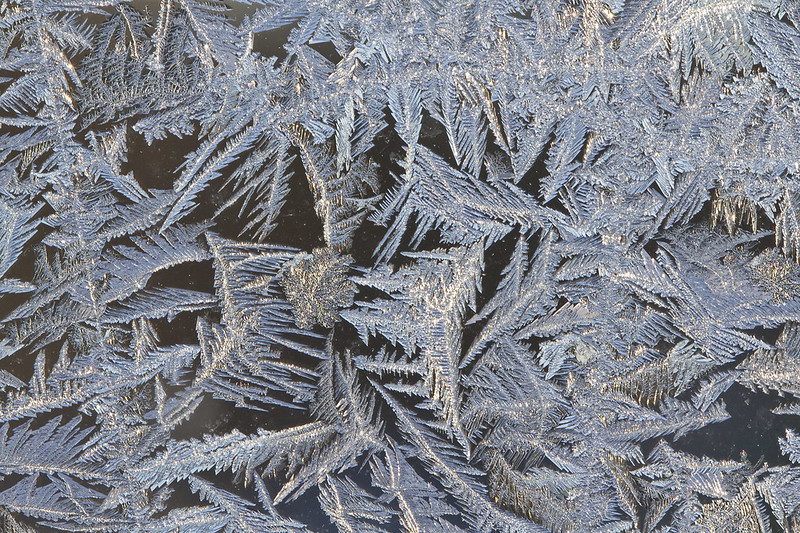 frosty4