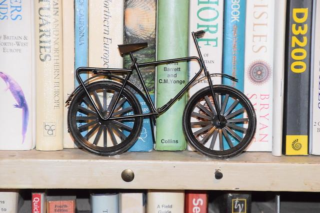 Bike ona Bookcase