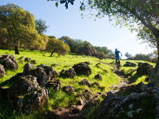 Upper Skyline Trail