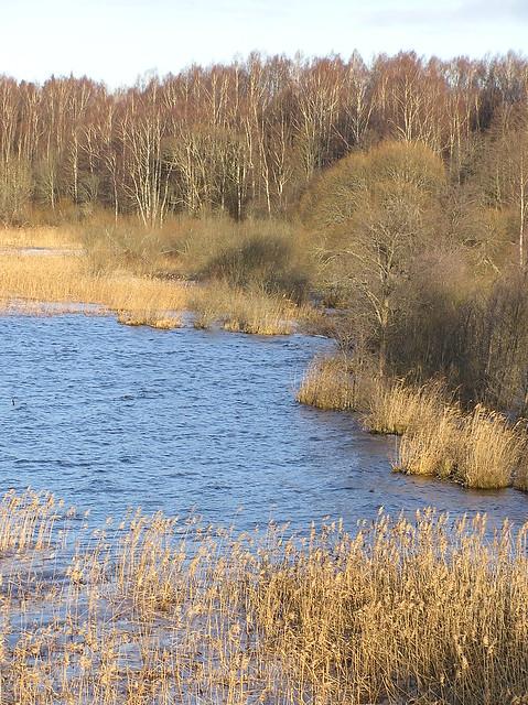 Lake Õisu