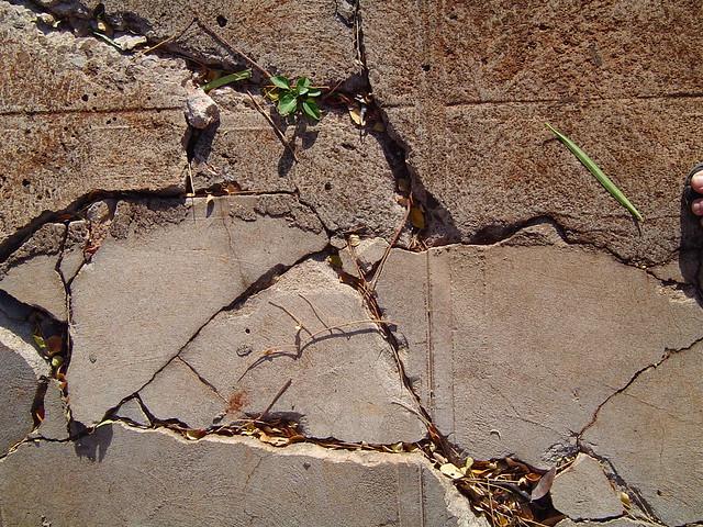 Cracked - 2007, Sony DSC-P72