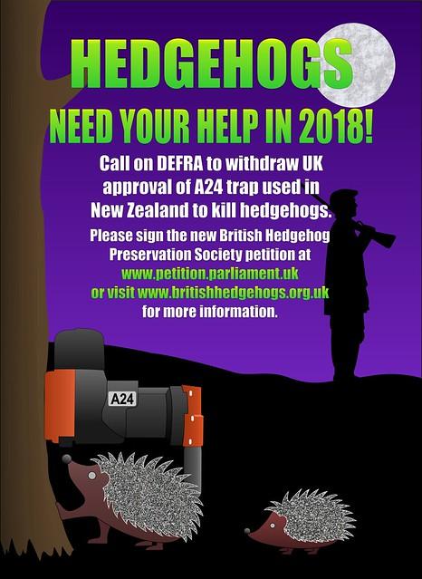 Hedgehog A24 trap poster 2018
