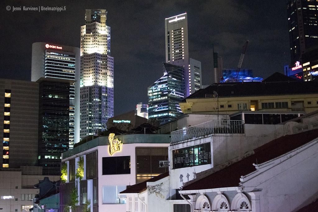 20180218-Unelmatrippi-3-nakoalapaikkaa-Singapore-DSC0038