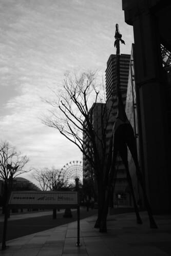 Kobe on 23-02-2018 (23)