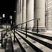 ENTRANCE STEPS, SHEFFIELD CITY HALL_DSC_0995_.NXD_LR_2.5
