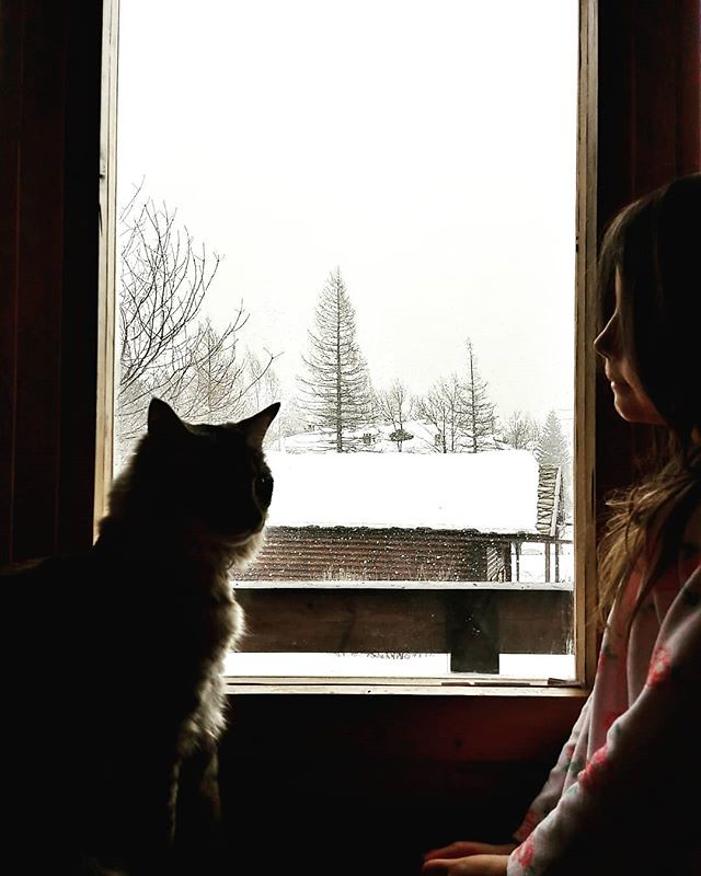 A girl, a cat and the snow #snow #snowing #mountains #winter #life #family #love #cute #lovely #picoftheday #photooftheday #photography #trees #mybabygirl #kid #fun #pet #cat #instagood #igers #igersitalia #white #looking