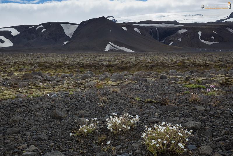 At the bottom of Langjökull