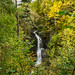 Birks of Aberfeldy, Aberfeldy, Scotland, (October 2017) Sony ILCE-6000 by Bruscot Photography
