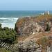 Mendocino 5/23/08 #pacificcoast #ocean