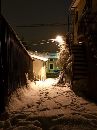 Snow in the village.