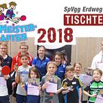 2018-01 TT-mini-Meisterschaften