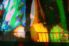 vivid colors 7