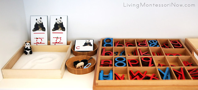 /p/ is for Panda Salt Tray and Movable Alphabet Work