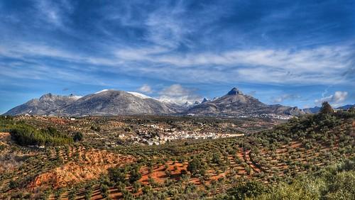 324. Calicasas. Granada.