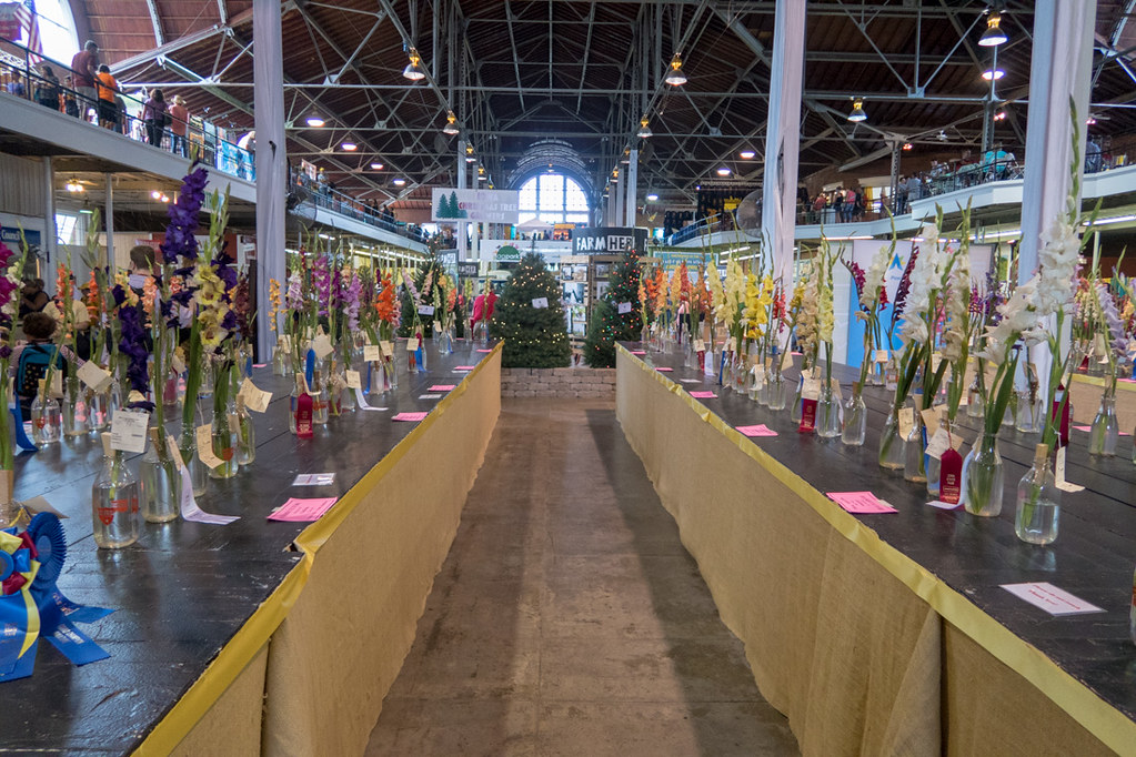 Orchid Competition at Iowa State Fair