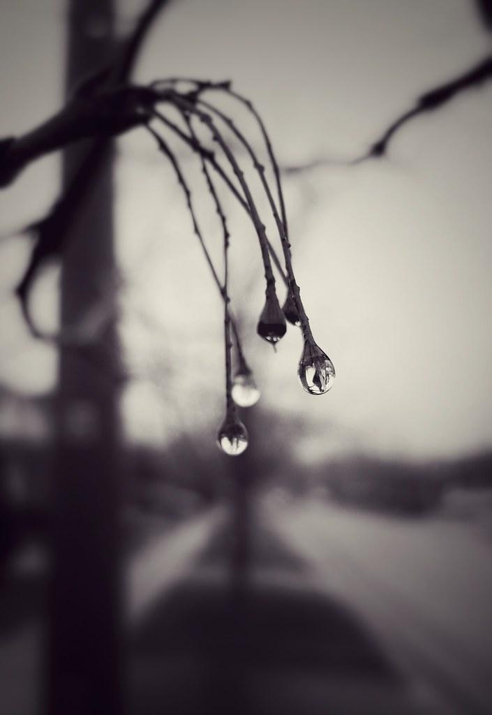 Droplets - Explored