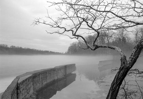 bicentennialpark farringtonlake tranquility winter eastbrunswick leicacl film dam ilfotechcdeveloper147 tree nj bnw fog acros monochrome bw ice milltown newjersey unitedstates us