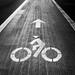 Dreary Bike Path