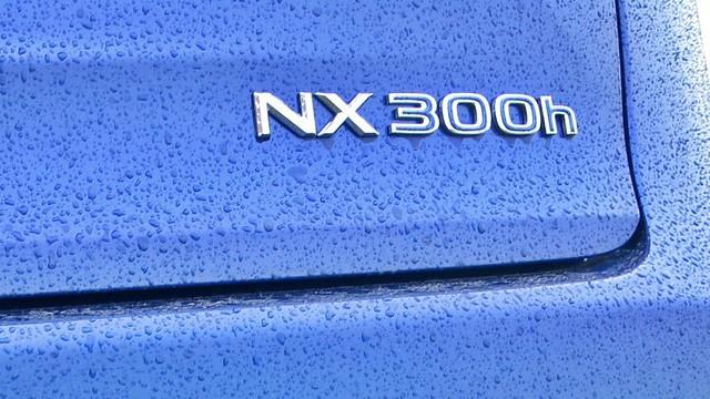 Lexus NX 300h test fl 031_1