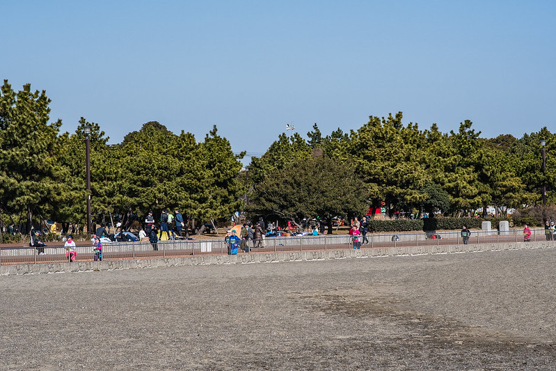 城南島海浜公園のマラソン大会