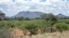 Auf der B1 zwischen Reoboth und Windhoek