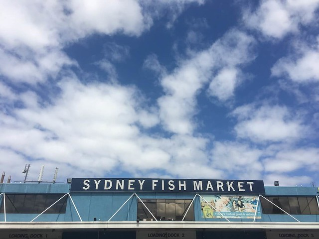 Sydney fish market - best place to eat in Sydney