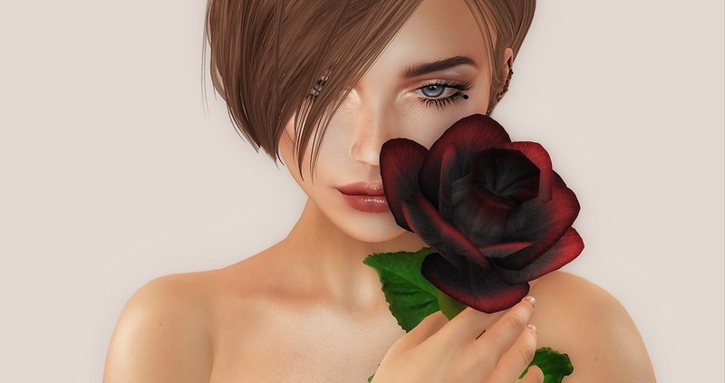 a ROSE for a Beautiful Lady