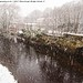 Snow Falls on to the River Calder