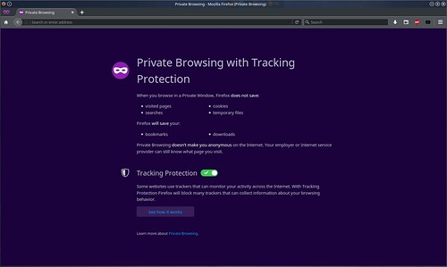 Private Browsing - Mozilla Firefox (Private Browsing)_020