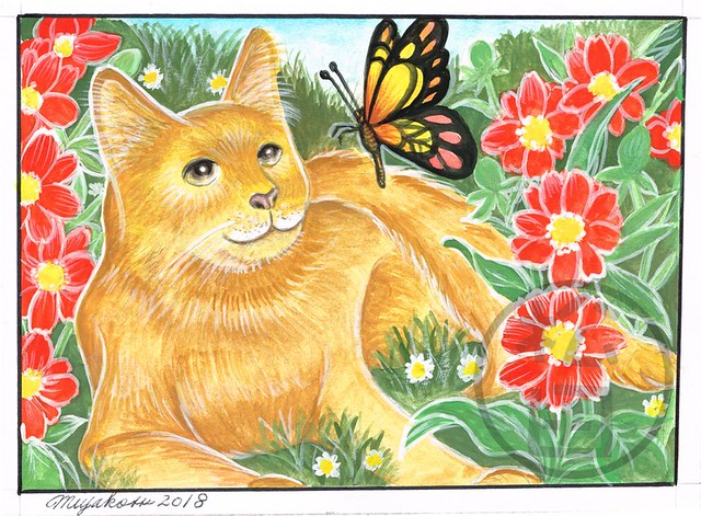 Marmalade Cat with butterfly and Tithonia