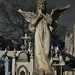 01-24-18 Cemetery Walk 03 por derek.kolb