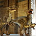 Natural History Museum - London - Deinonychus