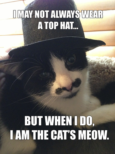 cats-meow