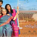 Shourya's Ammamagarillu first look