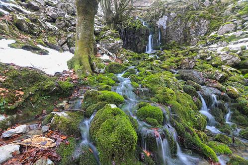 Parque Natural de Gorbeia #DePaseoConLarri #Flickr -71