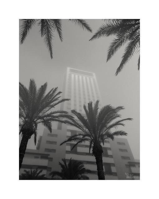 Días de niebla...