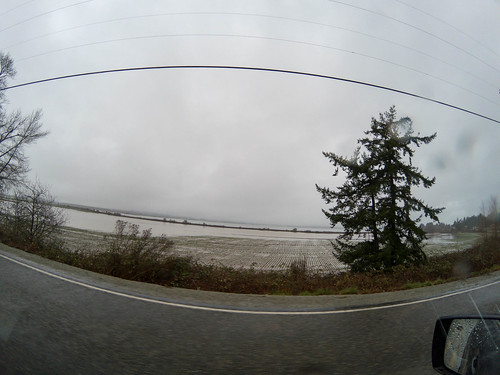 Padilla Bay Flooding-001