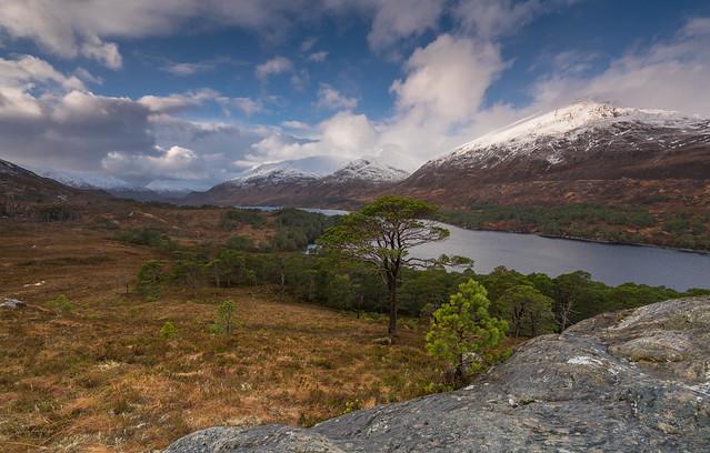 A Glen Affric View ..
