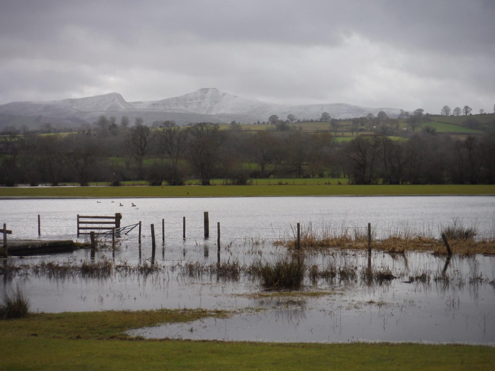 Cribyn, Pen y Fan, Lake Llangorse SWC Walk 308 - Bwlch Circular (via Mynydd Troed and Llangorse Lake)