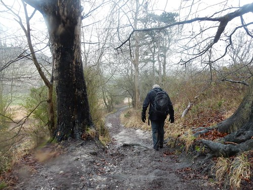 Descending from Great Wood