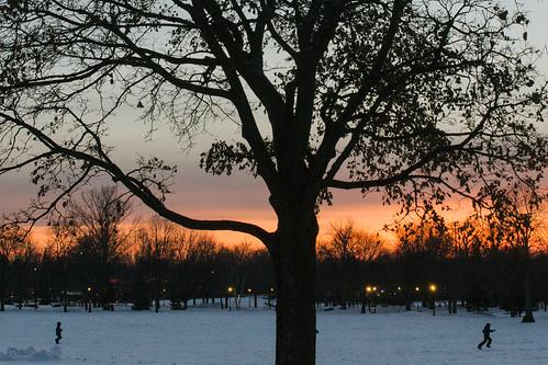 winter tree sunset kids snow ahuntsic