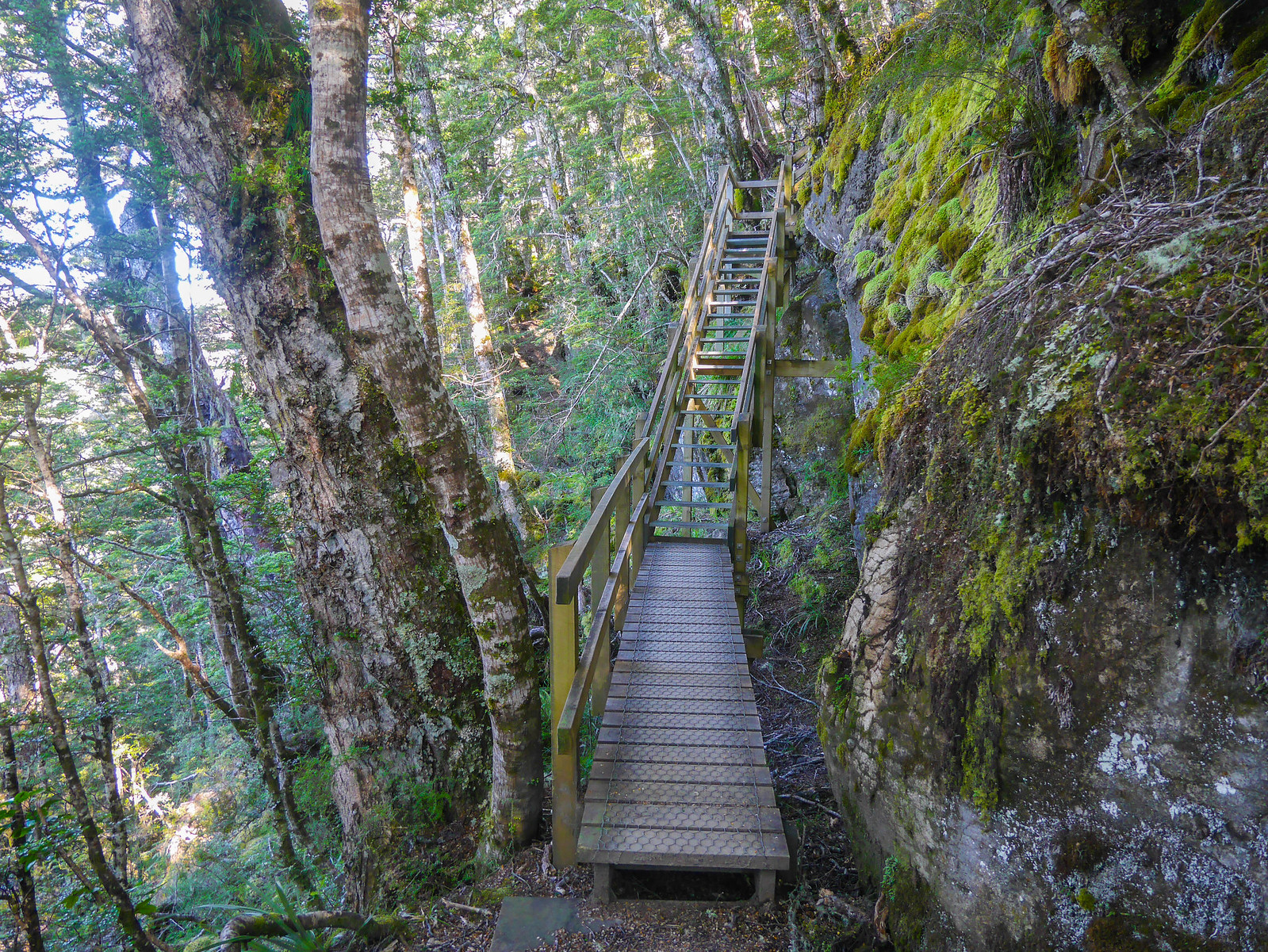 Stairs along the limestone bluffs