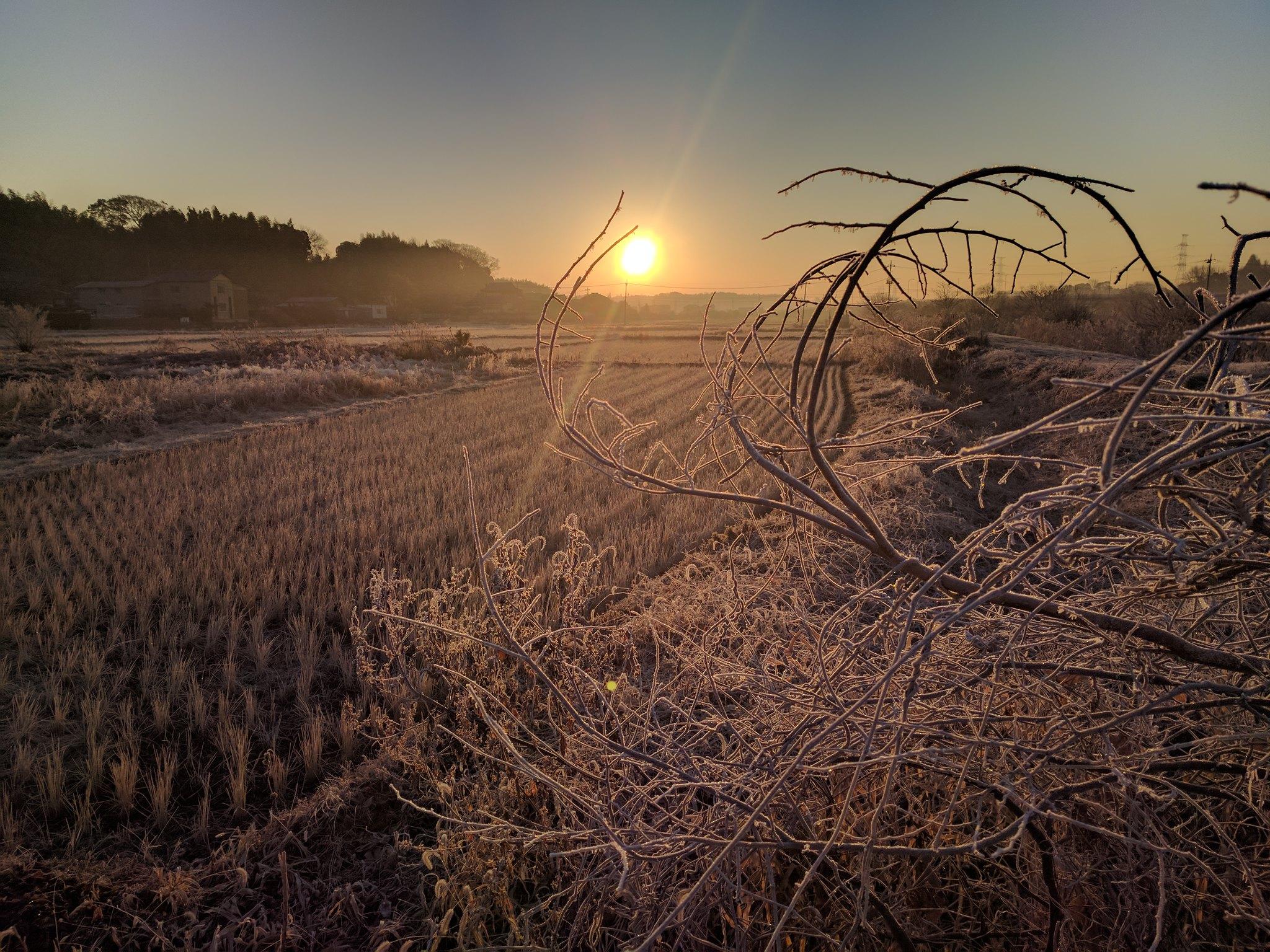 New Year's Sunrise