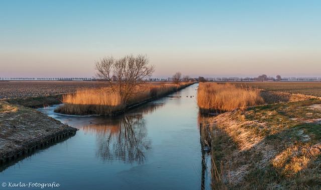 Golden hour in the polder...